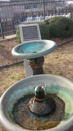 Water from the Artesian well  The fountain city  - Picture