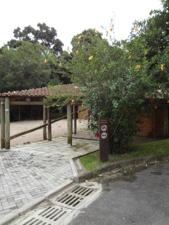 Gutierrez Woods Chico Mendes Memorial