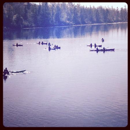 Inn at Skamokawa Landing: Kayak tour.