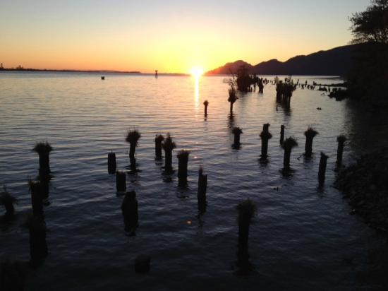 Inn at Skamokawa Landing: Sunset.