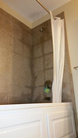 Blue Heron Beach Resort: Mold in the bathroom