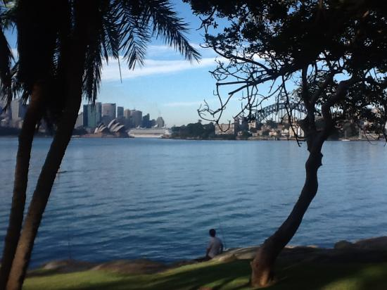 Cremorne Point to Mosman Bay Walk: View on a clear day without P&O