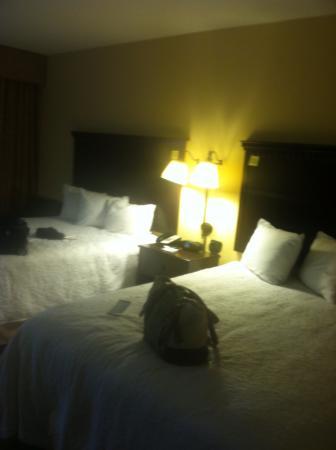 Hampton Inn & Suites National Harbor/Alexandria Area: Double bed room