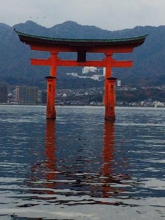 O-Torii gate - Picture of Itsukushima Shrine, Hatsukaichi - TripAdvisor
