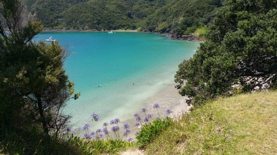 Russell, New Zealand: Beautiful Oke bay. Just go there!