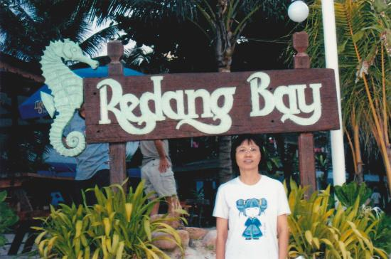 Redang Bay Resort : Infront of the hotel