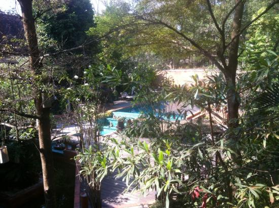 B2 Ayatana Premier Hotel & Resort: View from dining room to the pool