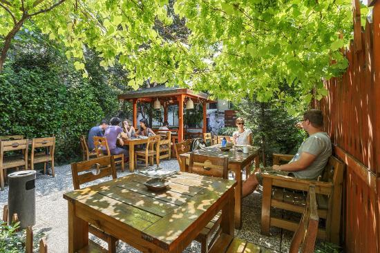 Hush Hostel Lounge: garden