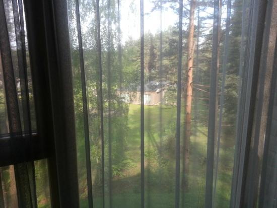 TonyResort: View from window