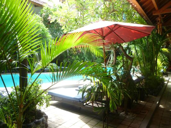Secret Garden Inn: Pool Area