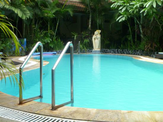 Secret Garden Inn: Pool
