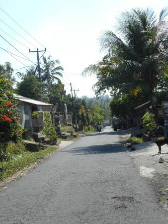 Sudanita Homestay: street nearby