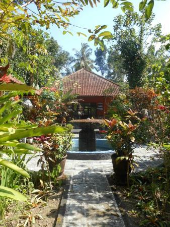 Sudanita Homestay: garden