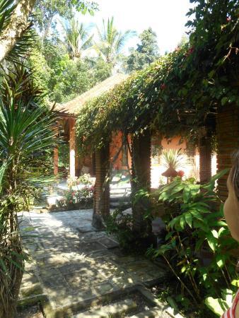Sudanita Homestay : garden