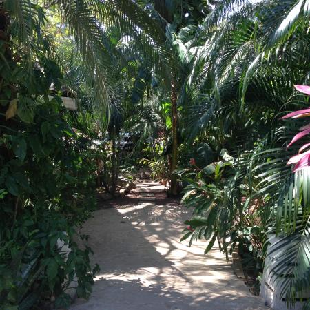 Path to the Rooms