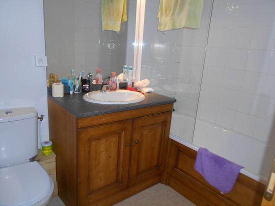 Goelia Les Chalets des Ecourts: Salle de bain