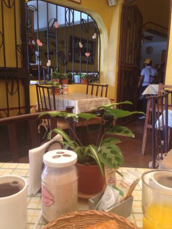 Cafe Cosecha Molienda