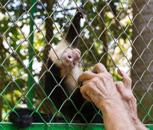 写真Alturas Wildlife Sanctuary枚