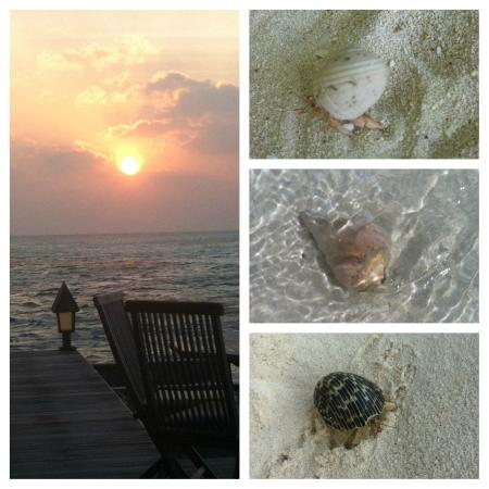 Gangehi Island Resort: Sonnenuntergang :-)
