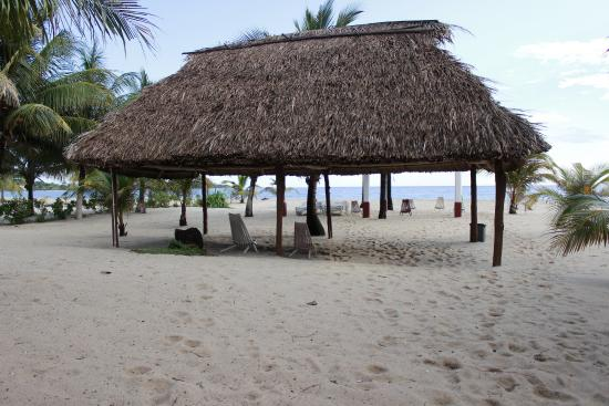 Miramar Apartments: Available beach loungers out under the thatched roof