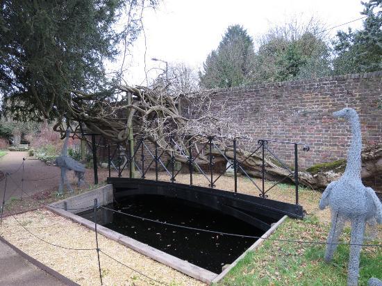Myddelton House Gardens: Beautiful