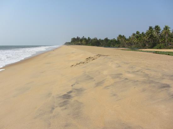 Neeleshwar Hermitage: la plage de l'hôtel