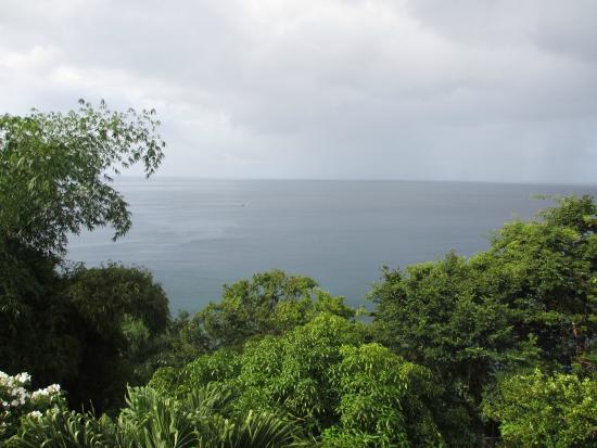 Mango Bay Cottages: Caribbean Sea