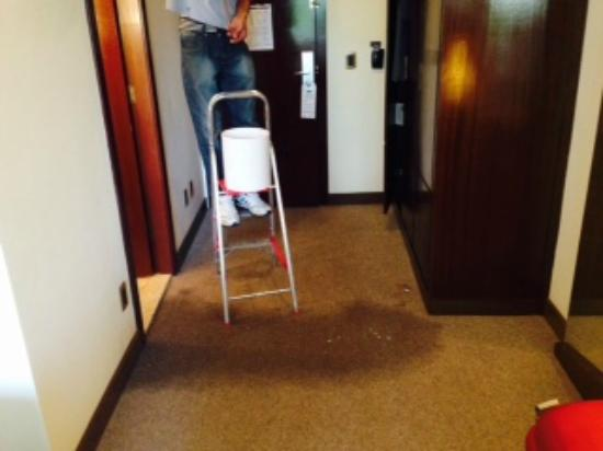 Radisson Alphaville : Leaky pipes and a wet carpet...this after having to move rooms thrice in 5 days
