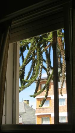 Hosteria Portofino: View laying on bed out the window - room #3