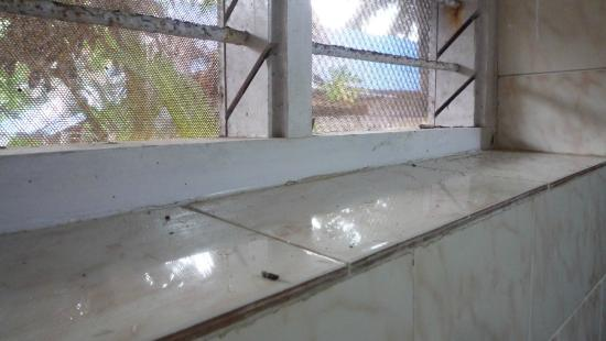 Hill-Top Ayurvedic Beach Resort : bathroom window