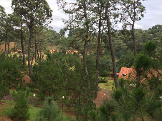 Hotel Bosque Escondido: Chulada!!