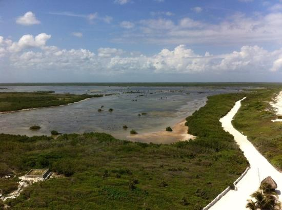 Pantera Jeep Tours: Crocodile area from the lighthouse