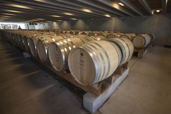 Queenstown Bike Tours: Peregrine wine cellar Central Otago