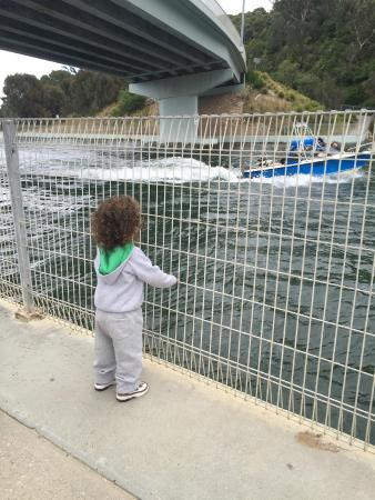 Waters Edge Holiday Park: Under the bridge at the playground near the Visitor Centre