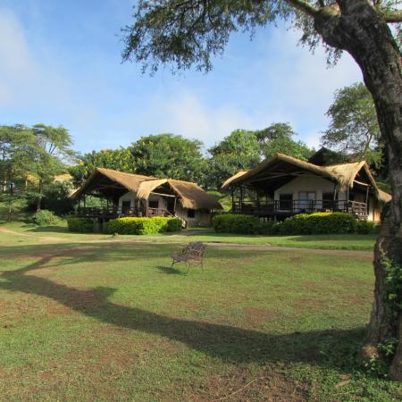 the four pools picture of chobe safari lodge murchison. Black Bedroom Furniture Sets. Home Design Ideas