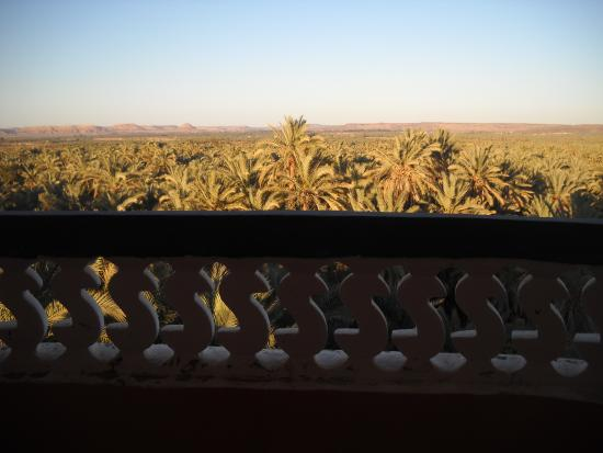 Bedouin Castle: The view from my room