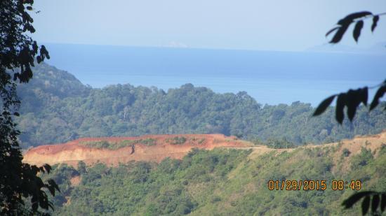 Rainforest Adventures : à 800 mètres de hauteur