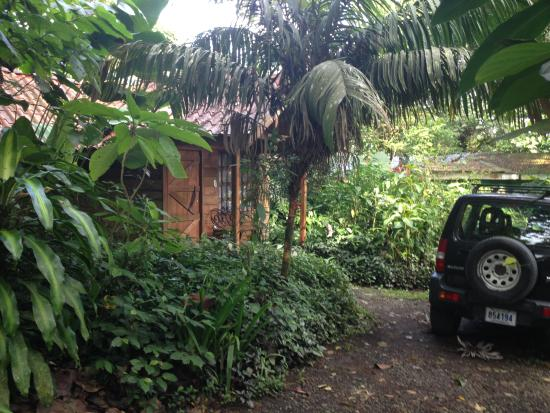 Arenal Oasis Eco Lodge & Wildlife Refuge : Our little bungalow in the rainforest