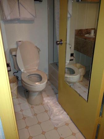 Days Inn Runnemede Philadelphia Area: Tiny bathroom with unexplained puddle on the floor.