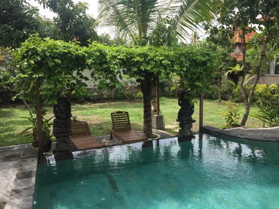Pakir Bungalows: The pool