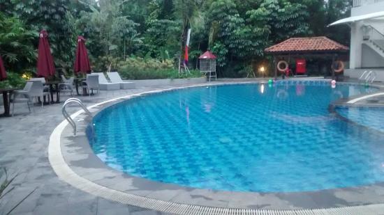 Padjadjaran Suites Hotel Bogor - room photo 4684490