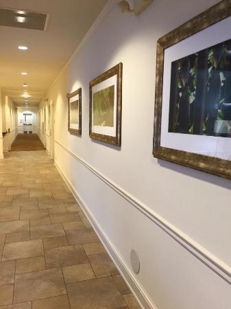 Hilton Garden Inn Kansas City: Lobby Hallway