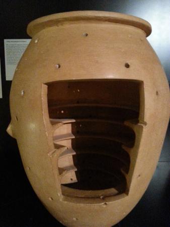 MAEC - Museo dell'Accademia Etrusca: ingrassa ghiri