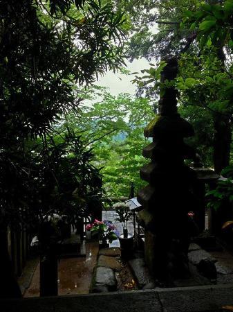 Grave of Minamoto Yoritomo: 頼朝が鎌倉を見下ろしている…そんな気持ちになろうと、背後から撮ってみました。この景色が、好きだったんだろうなぁと。