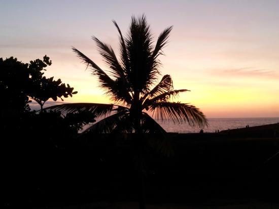 Seagreen Guesthouse: Der Ozean von der Terrasse