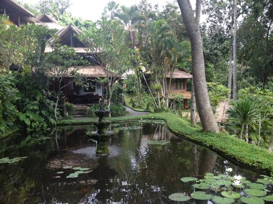 Hotel Tjampuhan & Spa : Hotel grounds
