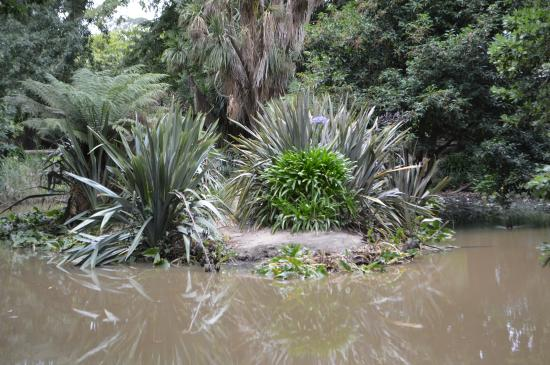 Buninyong Botanic Gardens