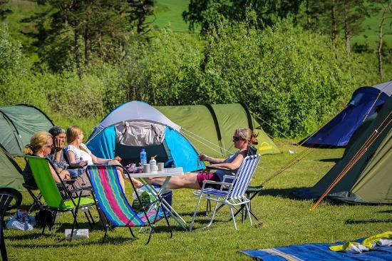 Onsakervika Camping: Campingområdet