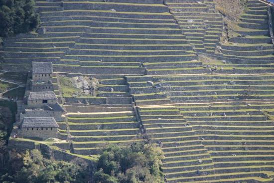 Putucusi Mountain: Vista de Machu Picchu