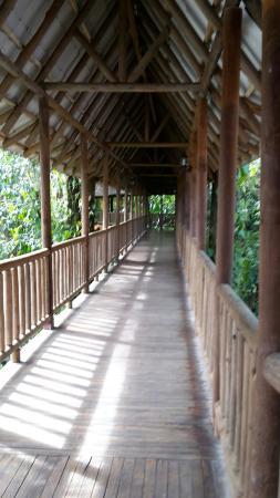 Hotel El Bambu: Zugang zu den Zimmern